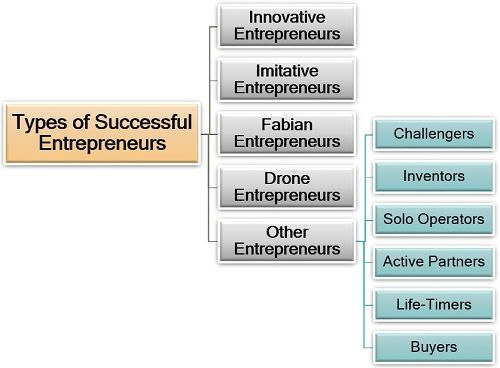 Types of Successful Entrepreneurs