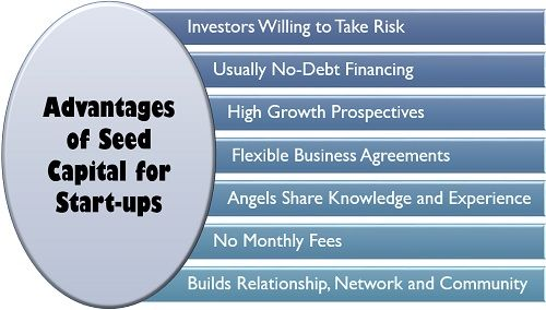 Advantages of Seed Capital for Start-ups