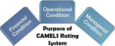 Purpose of CAMELS Rating System