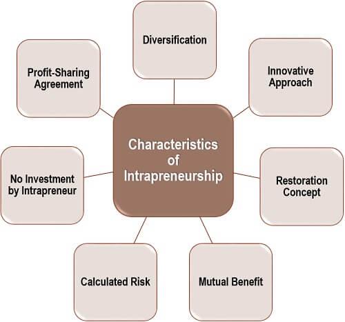 Characteristics of Intrapreneurship