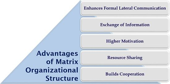 Advantages of Matrix Organizational Structure