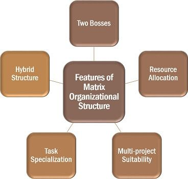 Features of Matrix Organizational Structure