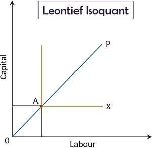 Leontief Isoquant
