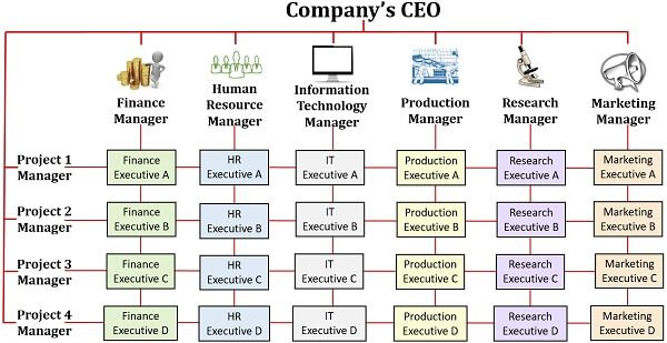 Matrix Organizational Structure Diagram