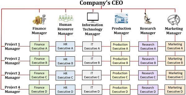 Matrix Organizational Structure Diagram