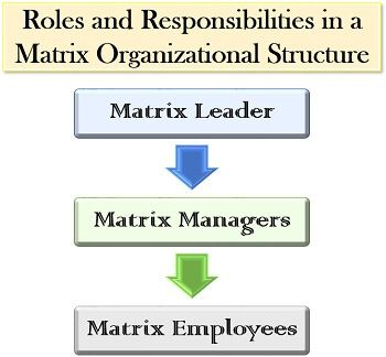 Roles and Responsibilities in a Matrix Organizational Structure