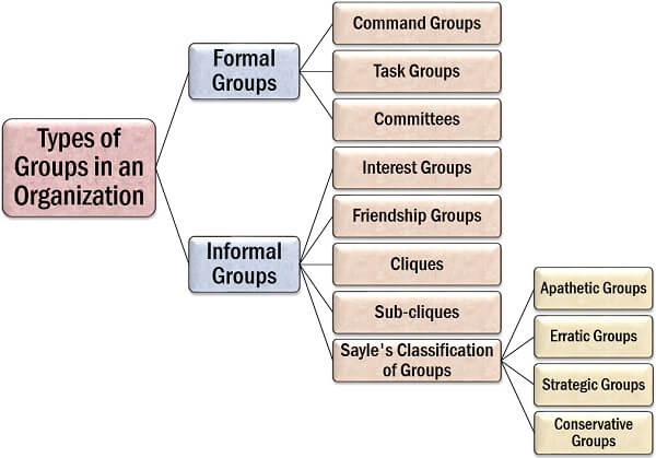 Types of Groups in an Organization