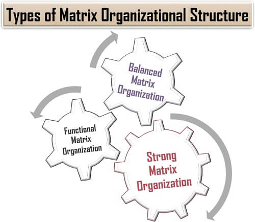 Types of Matrix Organizational Structure