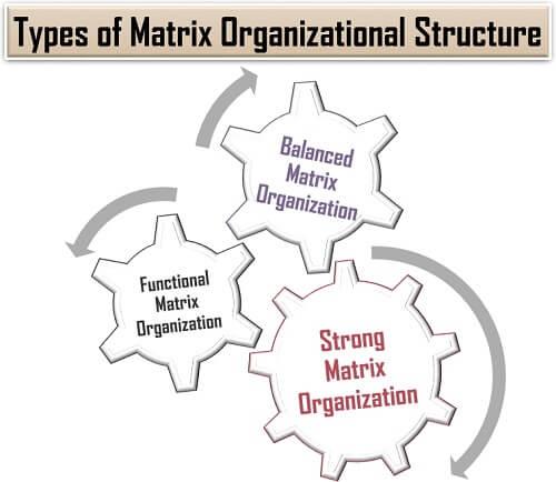 Types of Matrix Organizational Structure