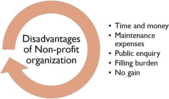 disadvantages of non-profit organization