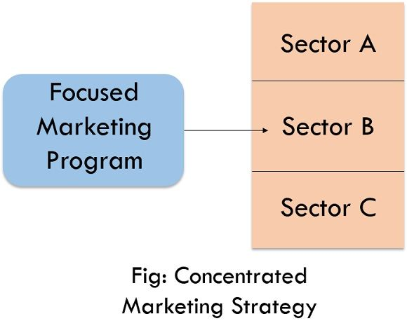concentrated marketing strategy
