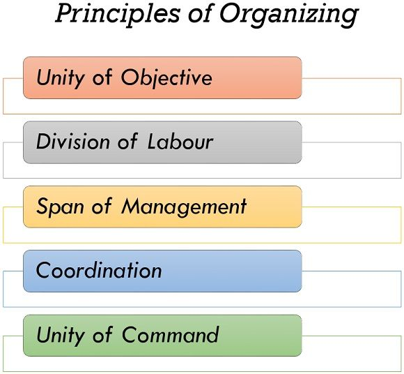 principles of organizing